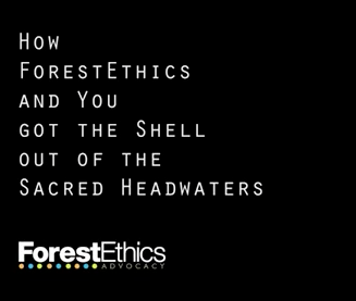 forest ethics